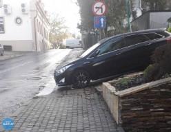 """""""Mistrz parkowania"""""""
